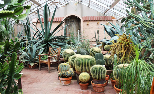 Lamberton Conservatory in Highland Park (photo by Rachel Dowling)