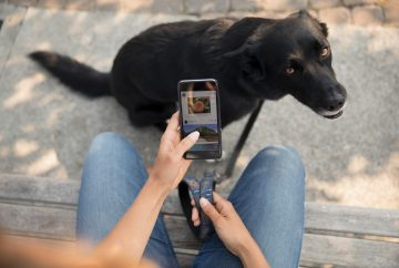 Picture of a person holding a phone with a black dog in the background